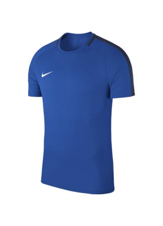 Nike Kids' Nike Dry Academy 18 Football Top (ROYAL BLUE/OBSIDIAN/WHITE)